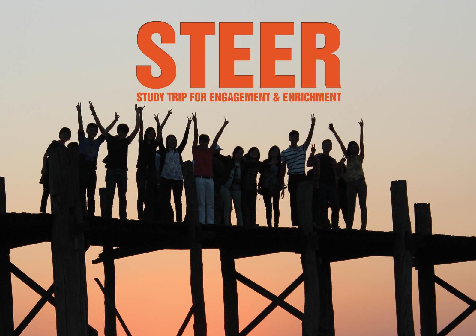 steer-nus-1