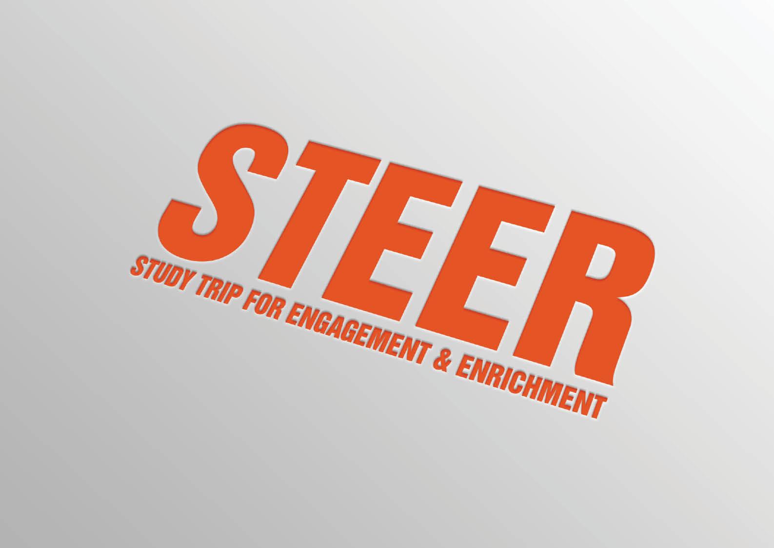 steer-nus-2